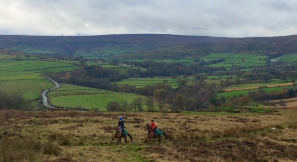 Up the moor canter track, Chloe and Whitchurch