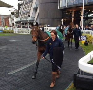 Julie with Nautical Niwit at Aintree