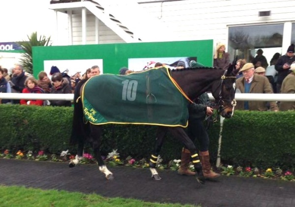 KEEP UP in the paddock at Catterick