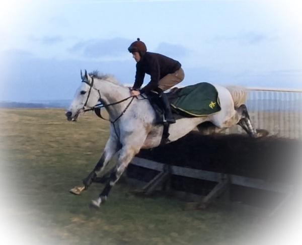 King's Grey schooling at the weekend