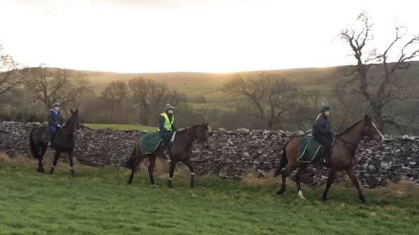 A sunny morning on the gallops