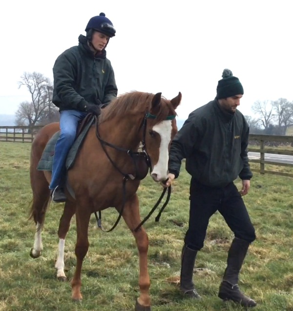 Phil and Sam with the Arcano 2 year old filly