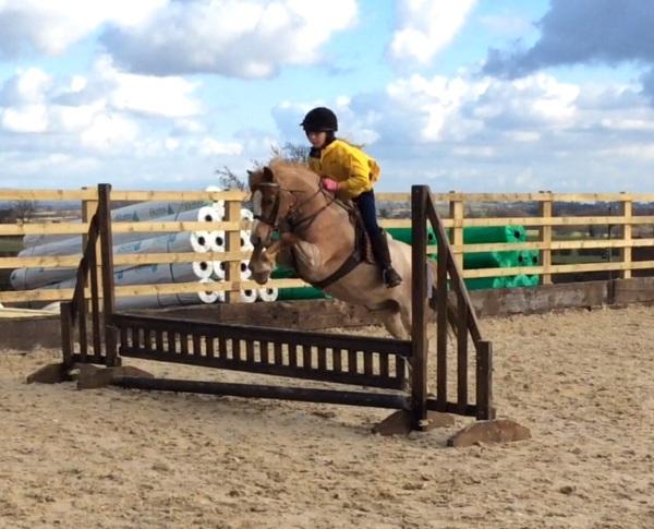 Izzy jumping Freddie