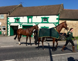 Our runers crossing the road at catterick to the paddock