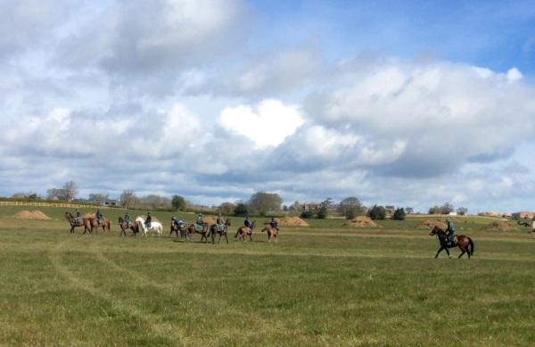 Exercise at green oaks - what a wonedrful place we have..