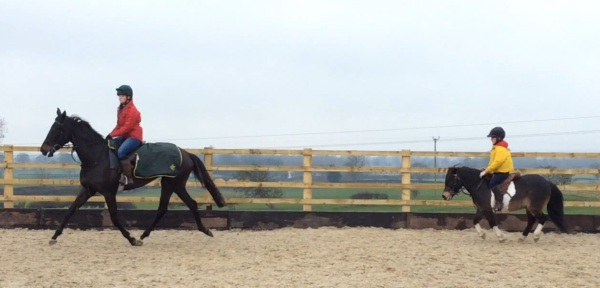 The two ends of the Equine scale - katie on City Dreams leads Izzy on Midget