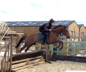 Birthday Guest schooling with Adam