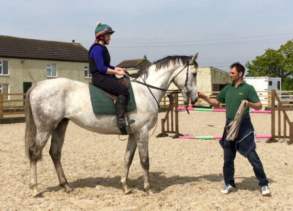 The gorgeous looking potential chaser SHU GREEN recently arrived from France