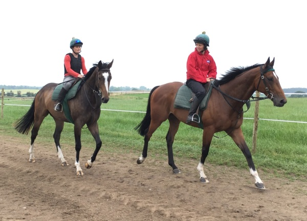 Ullswater and Royalty's 3 year old filly