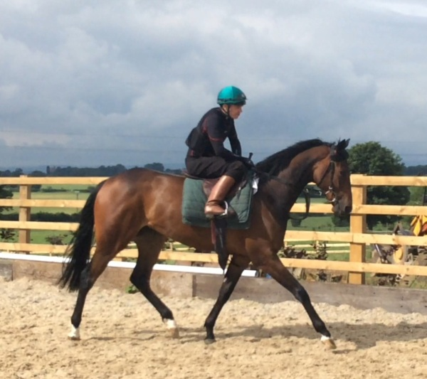 Andrew Mullen on the Equiano 2 year old