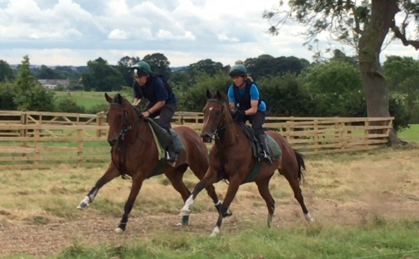 Whitchuch and Kiwayu working up our new gallop with Simon and Sarah