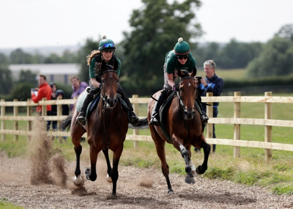 Equiano filly & Nautical Nitwit