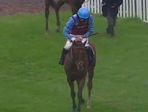 A pat from Adam as Nautical Nitwit triumphs at Sedgefield