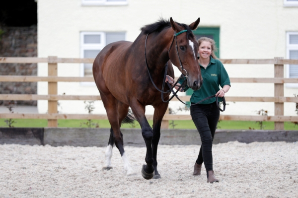 Megan leads Stenna at our Open Day on Sunday