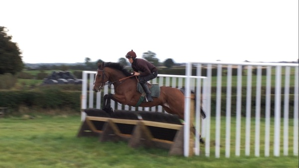 'Eddie' loving his schooling under Adam Nicol yesterday