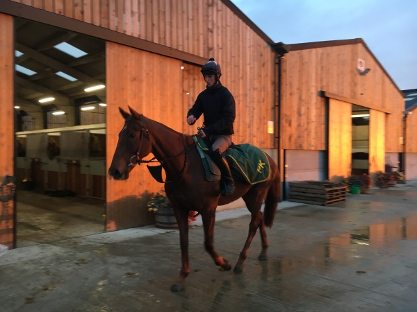 Cleve Cottage on his way to be schooled ahead of his Wetherby run