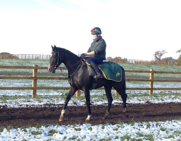 The good looking Northern Girl who will be ready to run early in the New Year - shares available