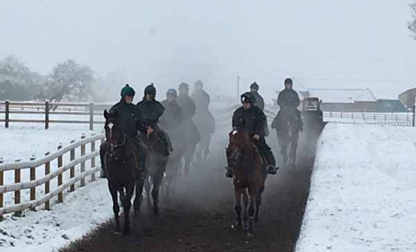 First lot on their way down to the gallop