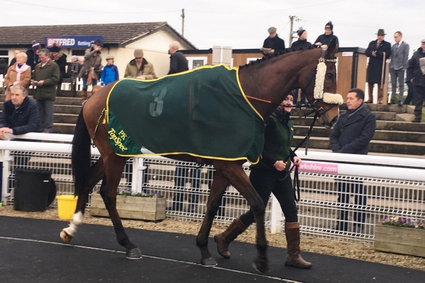 Sakhee's City at Wetherby - fell at the 2nd
