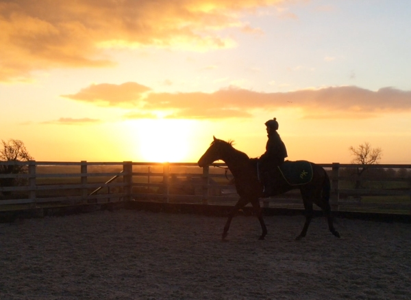 Sarah Olley on North Island - first lot this morning