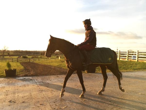 'Northern Girl' - entered up for her debut at Wetherby