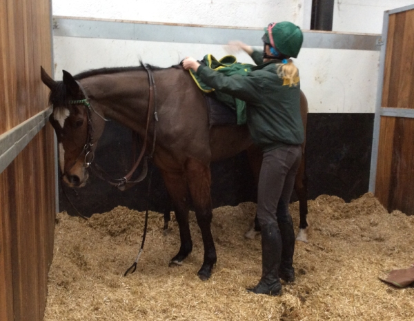 Little Bruce back to work but not fully recovered enough to run at Hereford today. This photo of him with Stacey really shows how little he is! But good things come in small parcels...