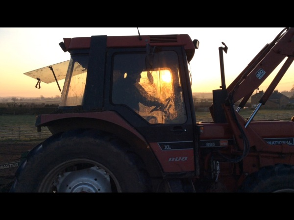 Kirbdog on his tractor...