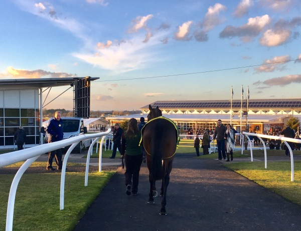 Bertie Blake's first sight of the racecourse