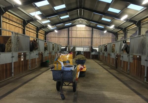 Barn 1 Ready for Tea Time