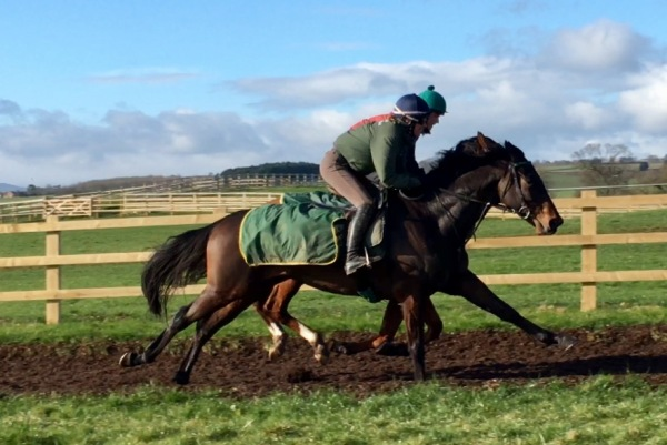 Bertie Blake and Wemyss Point breezing up together