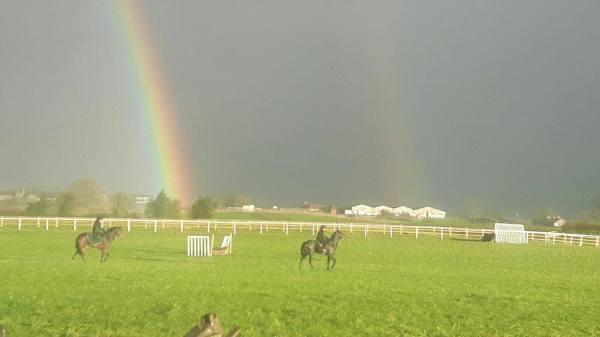 RainbowsRounds