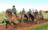 Rock Of Leon & Henry leading string