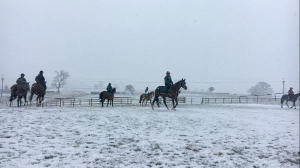 Snowy Dec17