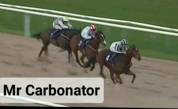 CarbonatorWin3Southwell