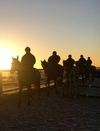 First lot in the sunrise