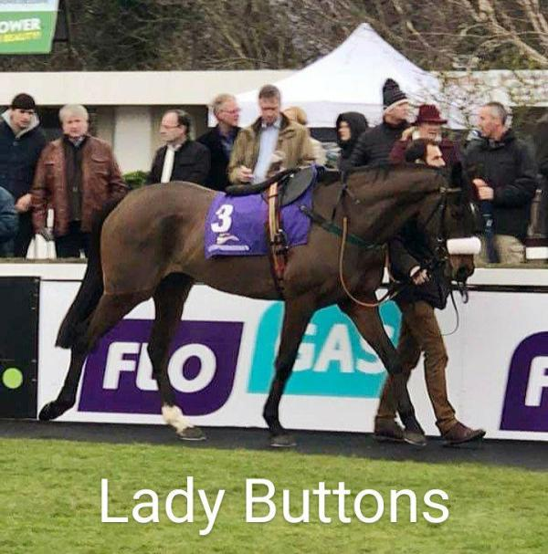 Buttons4thLeopardstown