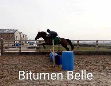 BitumenSchooling