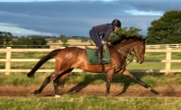 Lady Buttons on track for her return