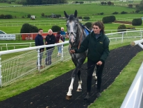 Suggestion on his way to the parade ring with Jodie