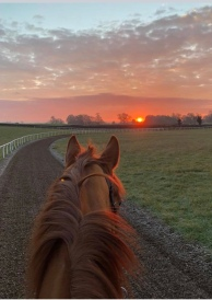 The sunrise from Fingal's