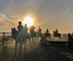 Ghost riders in the fog on Tursday morning