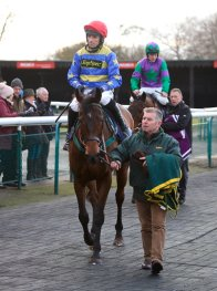 Nicely Indeed wins last time out