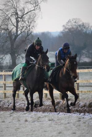Romeo Brown & Nautical Nitwit with their regular work riders Tom Midgely and Donna Aspell