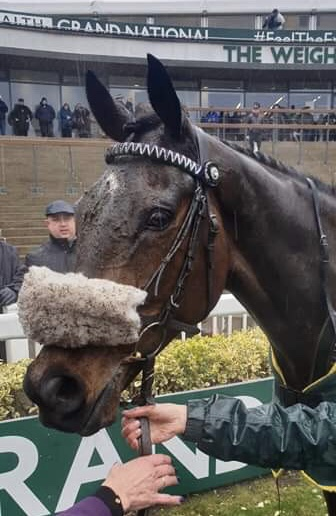 Philip Kirby Racing | Racehorse Trainer based at Richmond