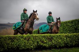 A cracking photo of LITTLE BRUCE & STELLAR NOTION who went schooling at Cheltenham on Monday despite the snow here... We made it out! Photos my Megan Dent Photography