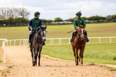 2 year olds Mont Blanc & Fircombe Hall